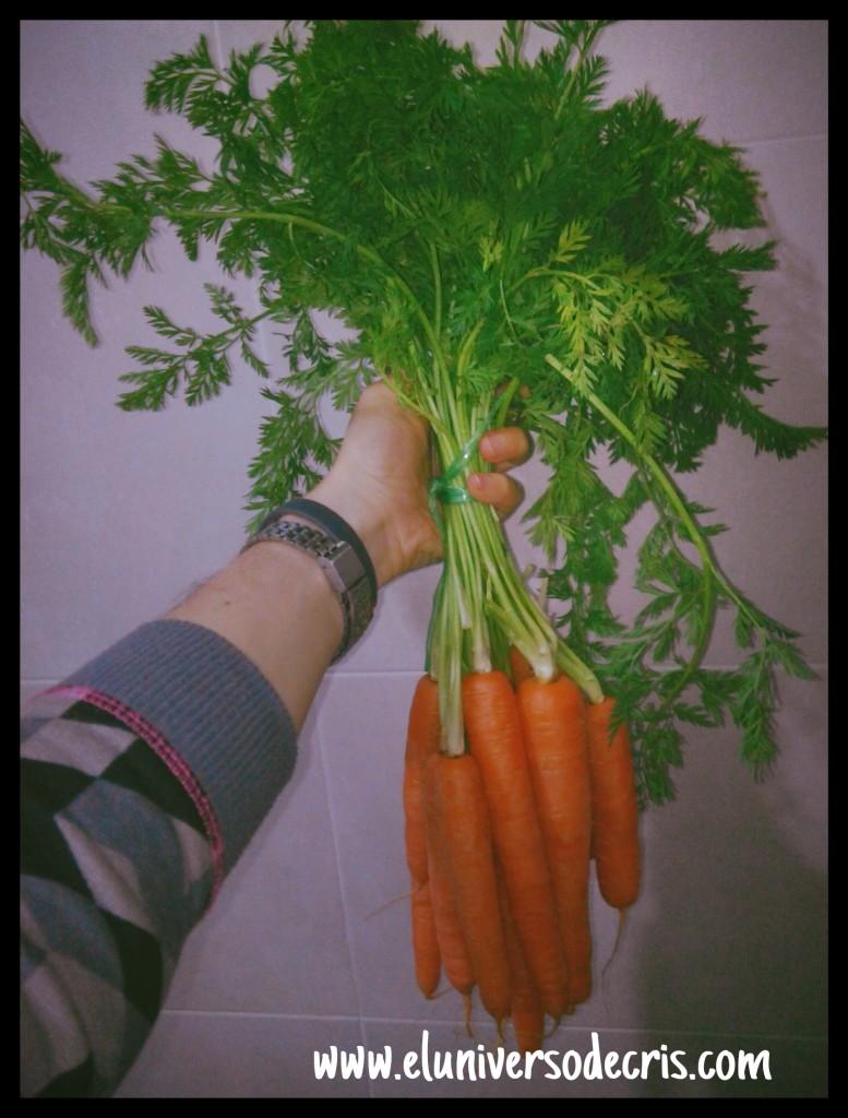 hoja verde zanahoria