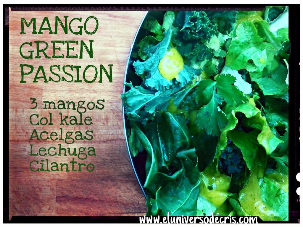 ensalada verde de mangov